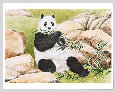 Panda designed by Leung Shing Fung