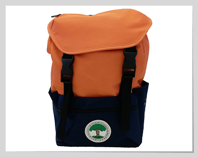 """""""Step Out for Children"""" Backpack"""