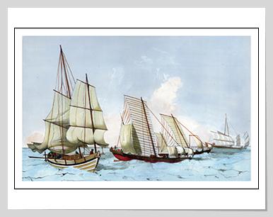 Pilot boat and fishing boats